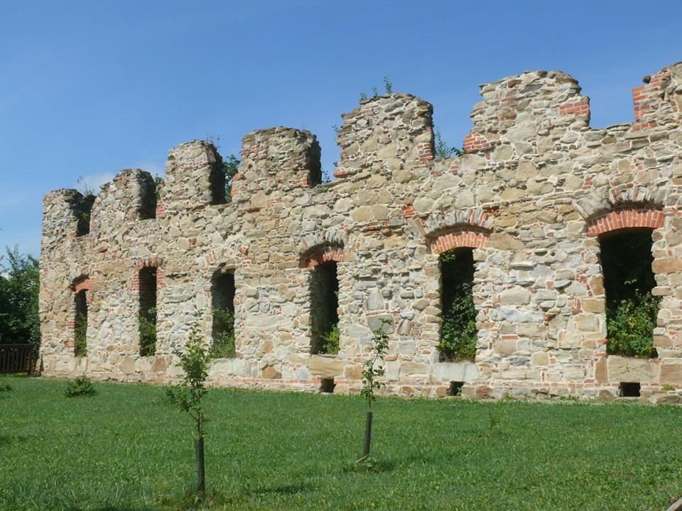 Ruiny Klasztoru Karmelitów Bosych w Zagórzu [ZDJĘCIA] - Zdjęcie główne