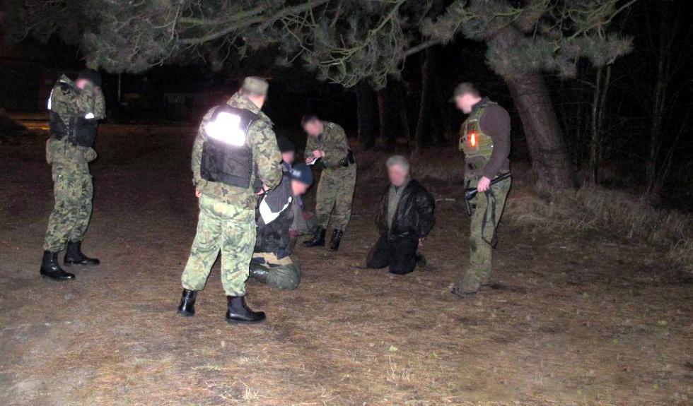 Rumuńska mafia grzybowa okrada lasy i grzybiarzy. Nadleśnictwo informuje prokuraturę - Zdjęcie główne