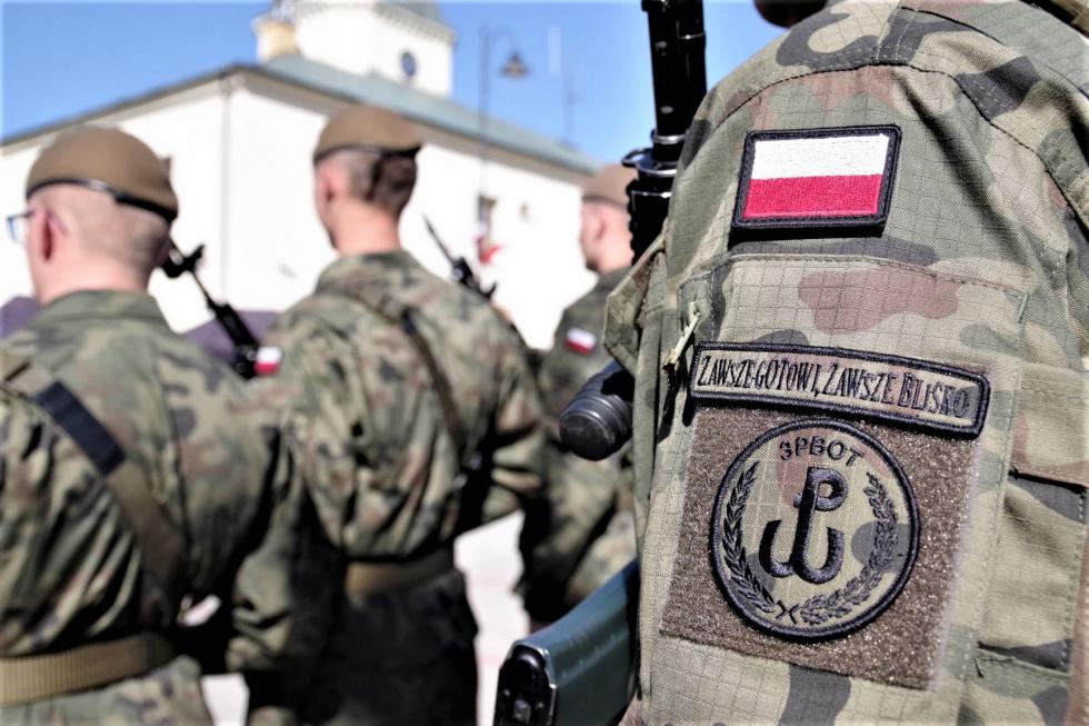 Terytorialsi wspierają polskich przewoźników  - Zdjęcie główne
