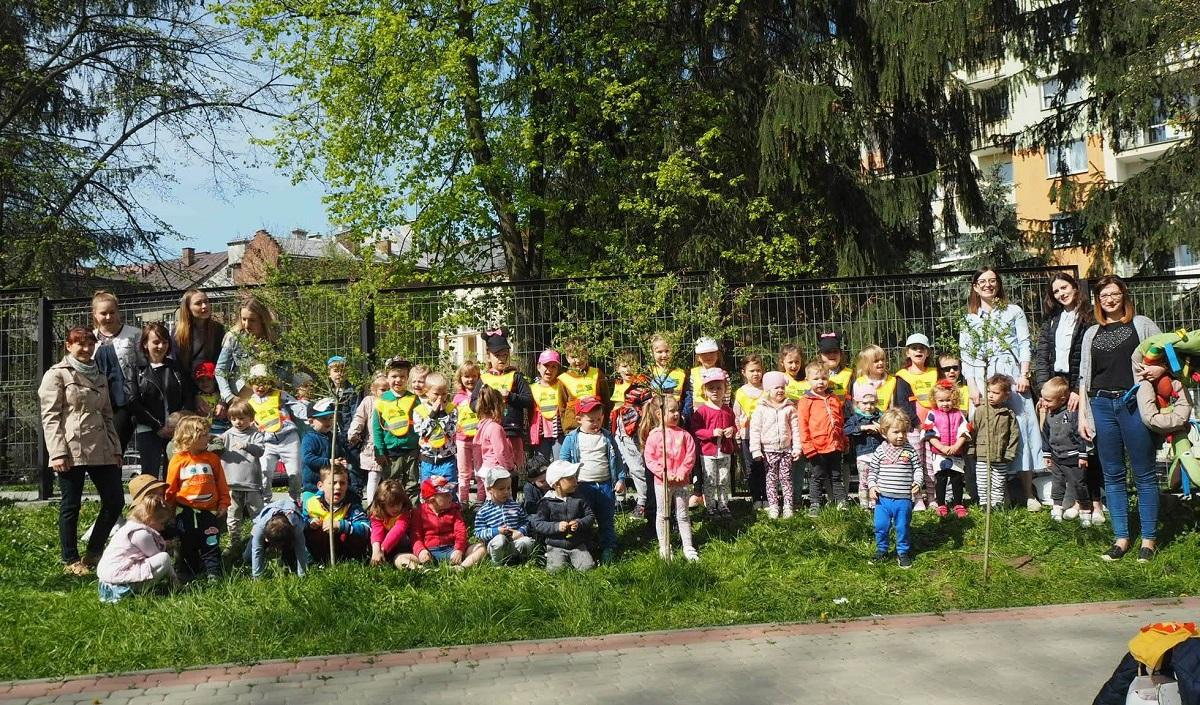 Przedszkolaki z Akademii Małego Geniusza sadzą drzewka  - Zdjęcie główne