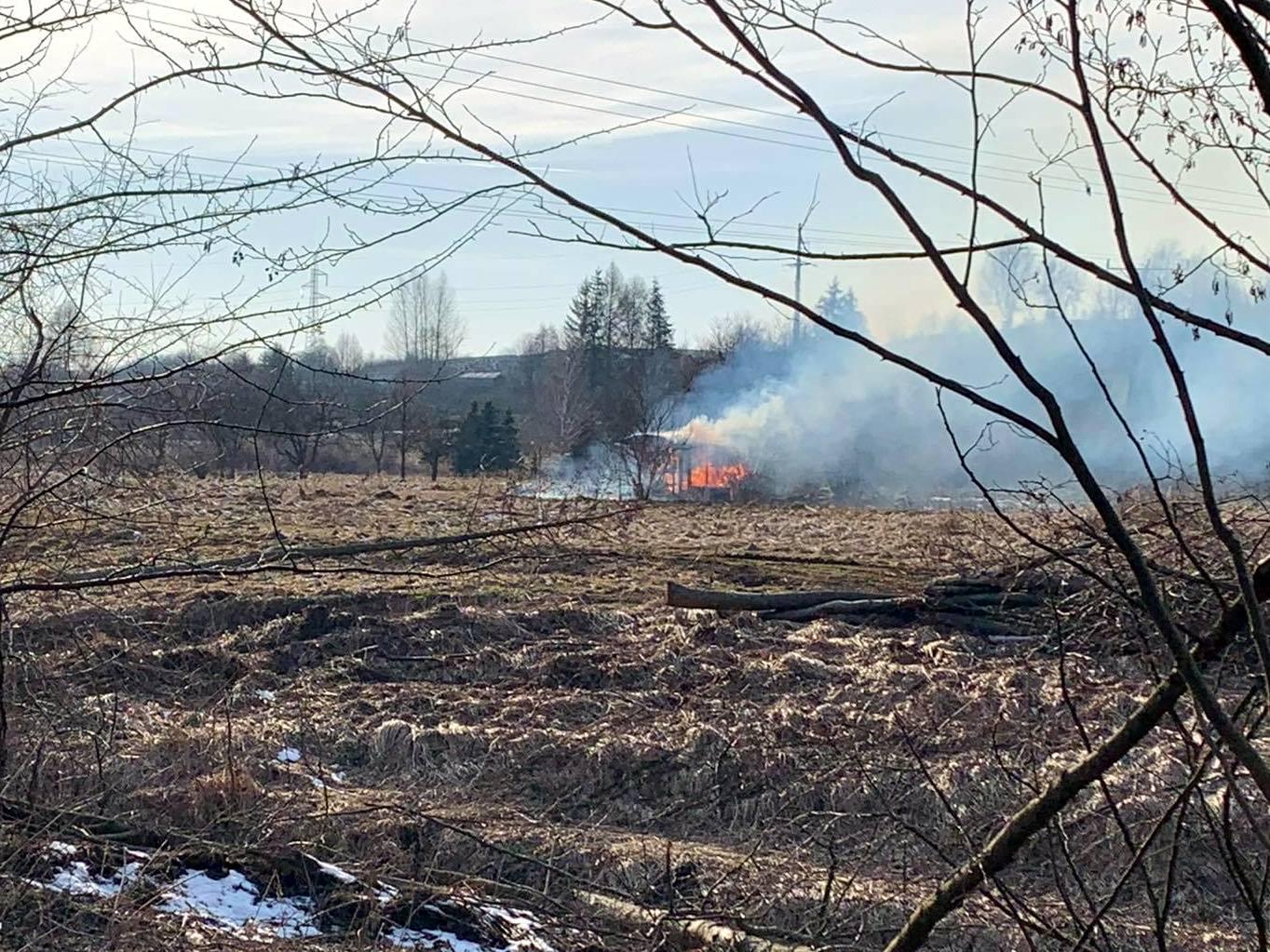 Pożar drewnianej altany w Płowcach [ZDJĘCIA] - Zdjęcie główne