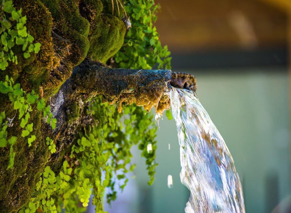 SANOK: Informacja o jakości wody w źródle przy ul. Chrobrego - Zdjęcie główne
