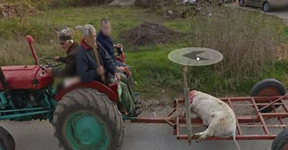 Dziwne sytuacje na Google Street View. Są także zdjęcia z Podkarpacia i naszej okolicy - Zdjęcie główne