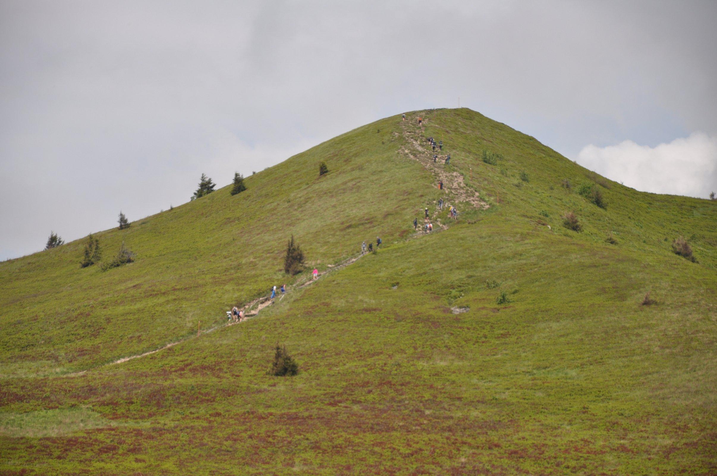 Bieszczadzki Park Narodowy podsumował frekwencję na szlakach - Zdjęcie główne