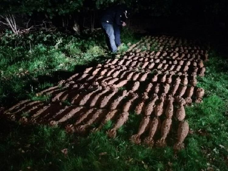 JASŁO: Mieszkał na bombach - w ogrodzie miał ponad 200 pocisków  - Zdjęcie główne