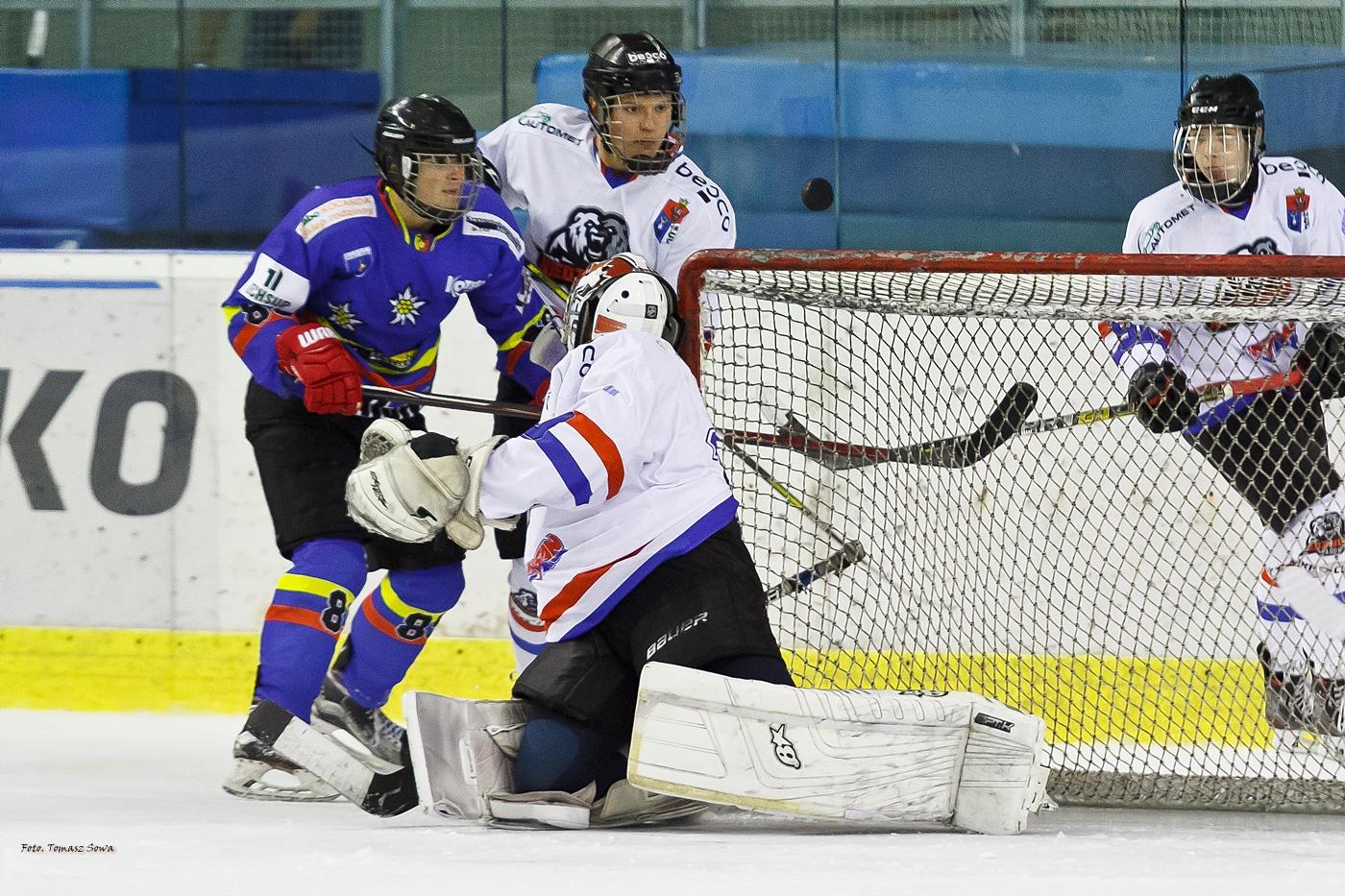 Zwycięstwo Niedźwiadków z Nowym Targiem w MHL [FOTORELACJA] - Zdjęcie główne