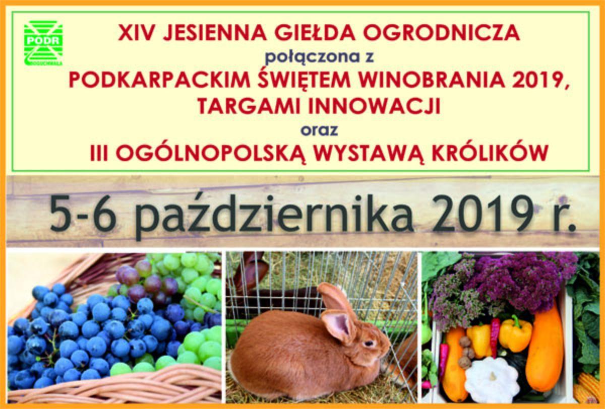 Jesienna Giełda Ogrodnicza połączona z Świętem Winobrania i Ogólnopolską Wystawą Królików - Zdjęcie główne