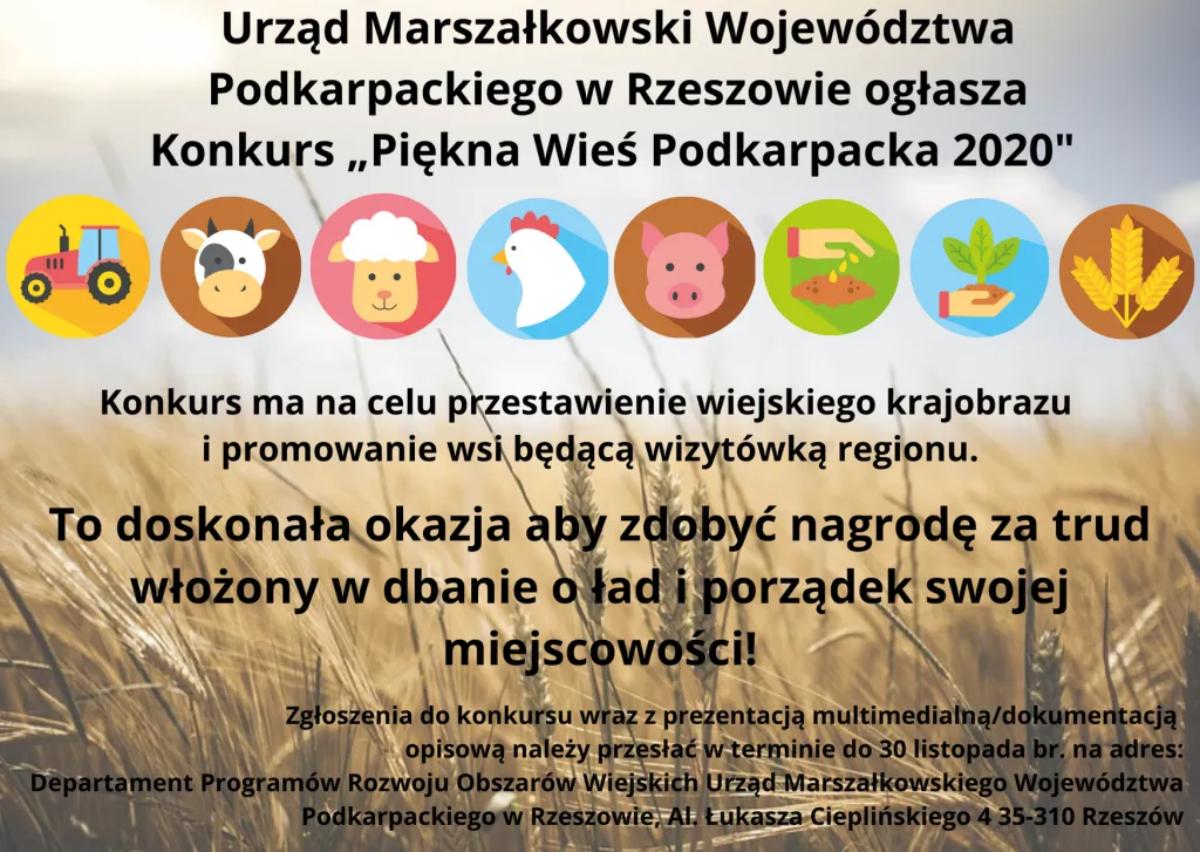 Konkurs ,,Piękna Wieś Podkarpacka 2020'' - zachęcamy do wzięcia udziału!  - Zdjęcie główne