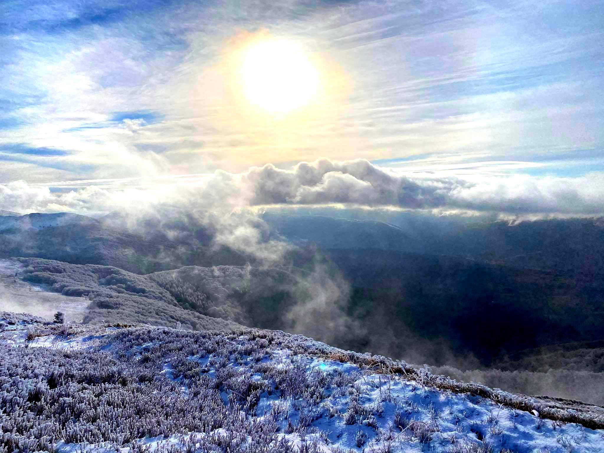 Zobacz zjawiskowy Smerek cały w bieli [FOTO] - Zdjęcie główne