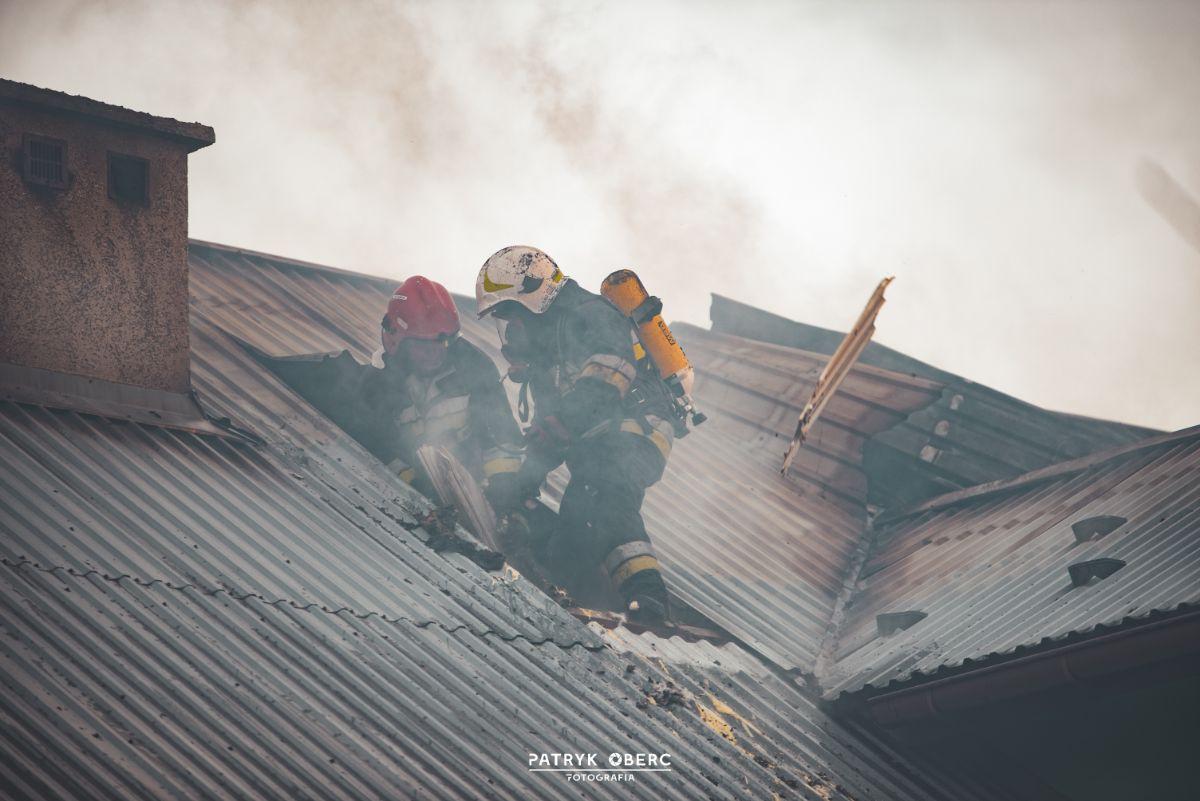 Pożar domu jednorodzinnego w Pielni [ZDJĘCIA+VIDEO] - Zdjęcie główne