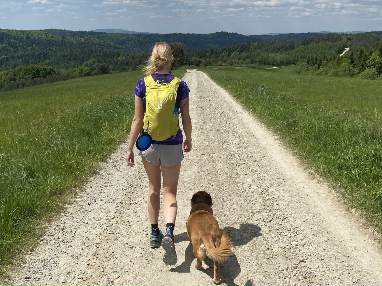 450 km pieszo dla psiaków z sanockiego STOnZ - wesprzyj tą niezwykłą akcję Kasi!  - Zdjęcie główne