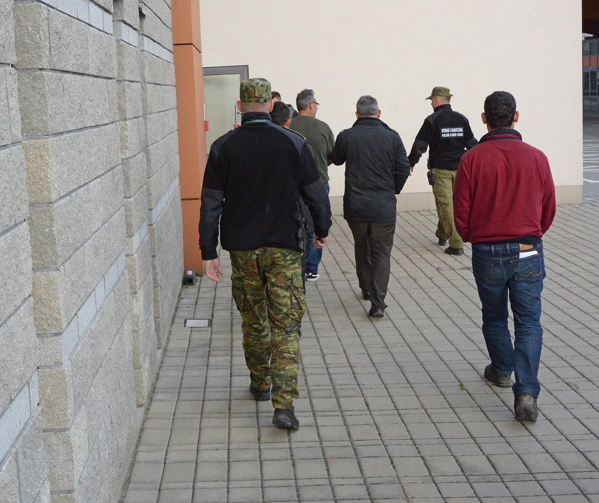 Strażnicy zatrzymali nielegalnych imigrantów  - Zdjęcie główne