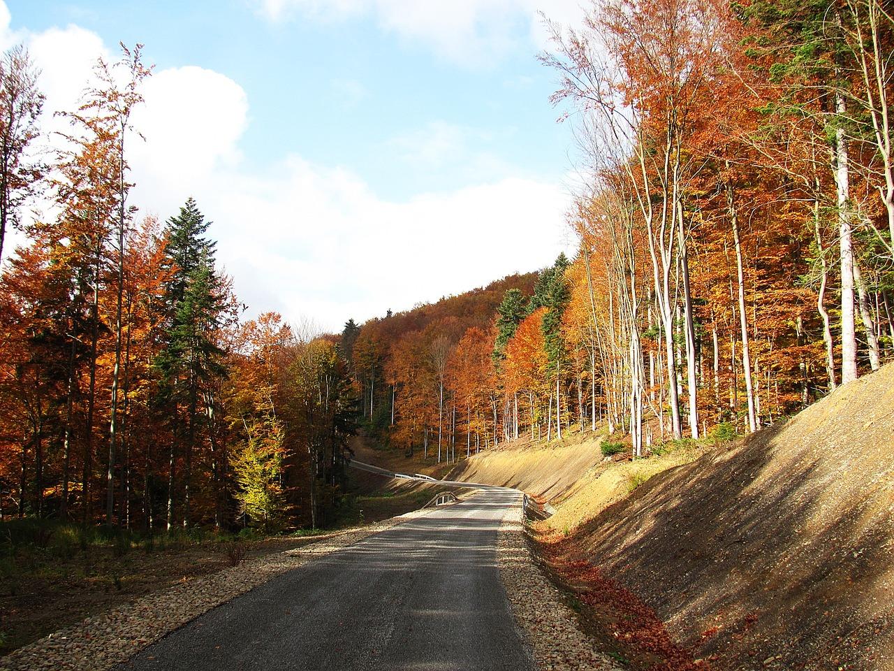 Wzmożony ruch w Bieszczadach. Każdy chce zobaczyć kolorową jesień w górach! - Zdjęcie główne