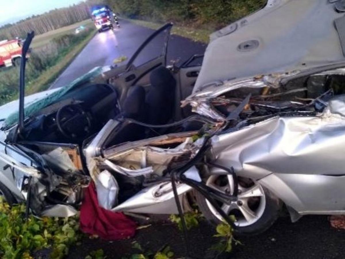 Śmiertelna ofiara wichury. Drzewo spadło na samochód [ZDJĘCIA] - Zdjęcie główne