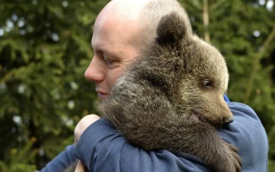 Niesamowity gość w Ośrodku Rehabilitacji Zwierząt Chronionych w Przemyślu [VIDEO] - Zdjęcie główne