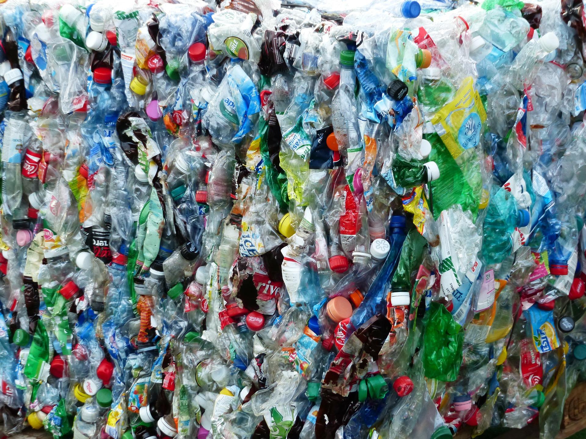 SYGNAŁY CZYTELNIKÓW: Co mamy zrobić ze śmieciami których SPGK nie chce przyjmować?  - Zdjęcie główne