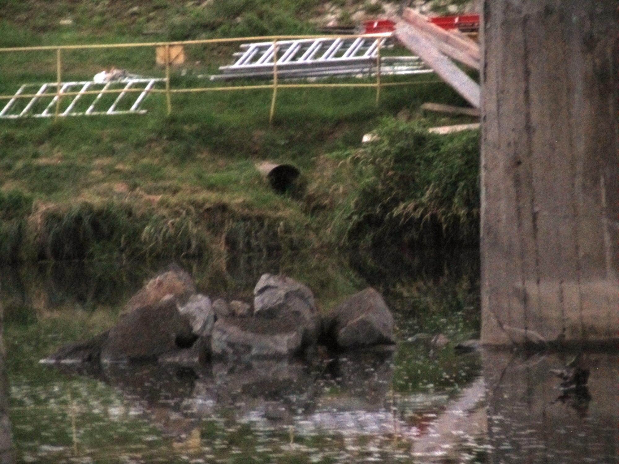 Rzecznik Wód Polskich o remoncie mostu w Sanoku - Zdjęcie główne
