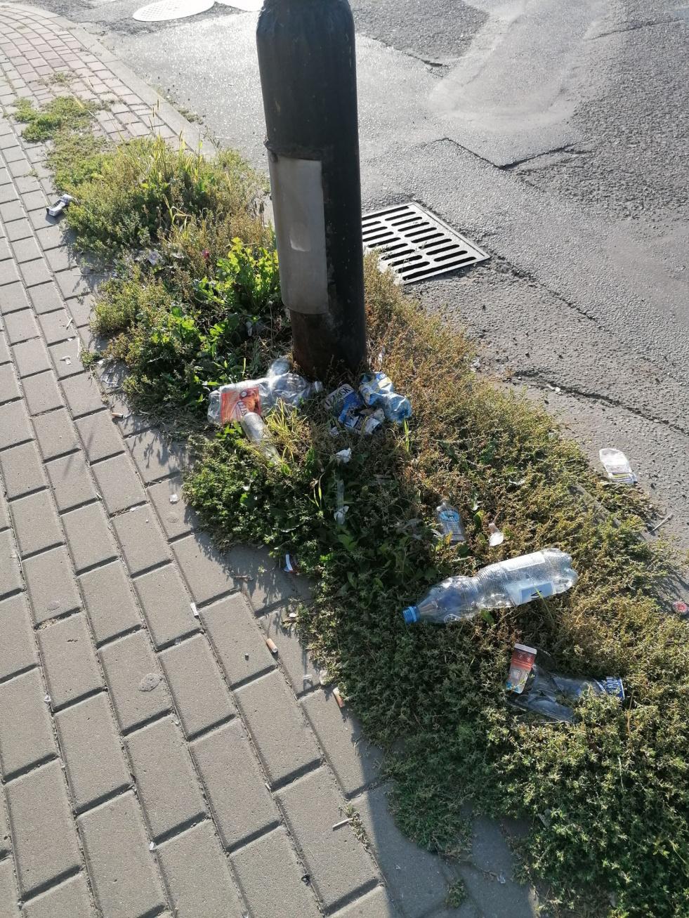 Sygnały czytelników: Śmieci, butelki po napojach na Cegielnianej [FOTO]  - Zdjęcie główne