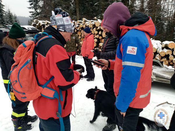 Psy uczą się odnajdywać zaginionych ludzi! [ZDJĘCIA] - Zdjęcie główne