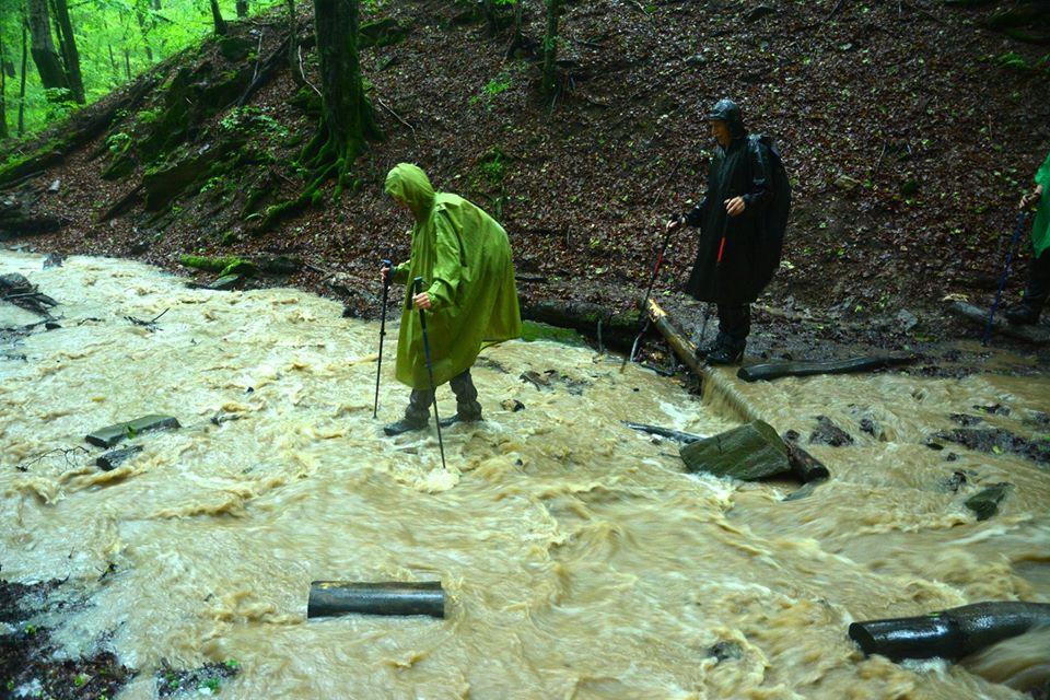 Bieszczady. Tak wyglądały szlaki w czasie ulewnych deszczy [FOTO] - Zdjęcie główne