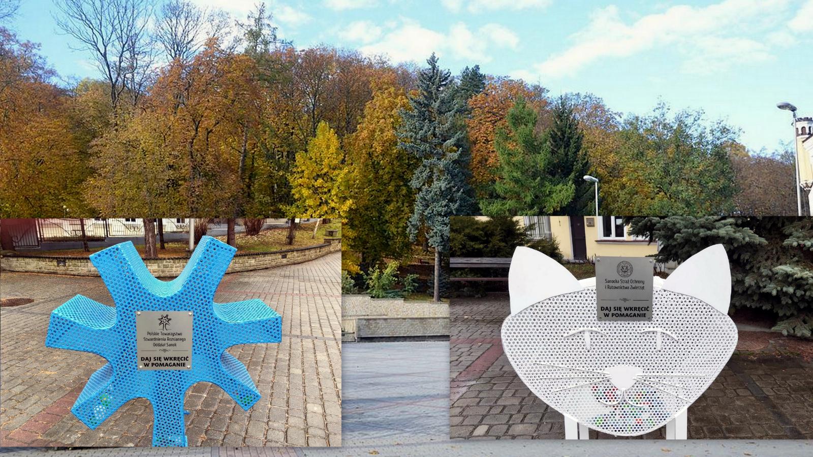 SANOK: Kot i neuron zbierają nakrętki na Placu Harcerskim [FOTO+VIDEO] - Zdjęcie główne