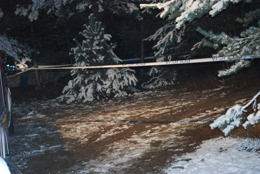 Z PODKARPACIA: Zwęglone zwłoki w lesie  - Zdjęcie główne