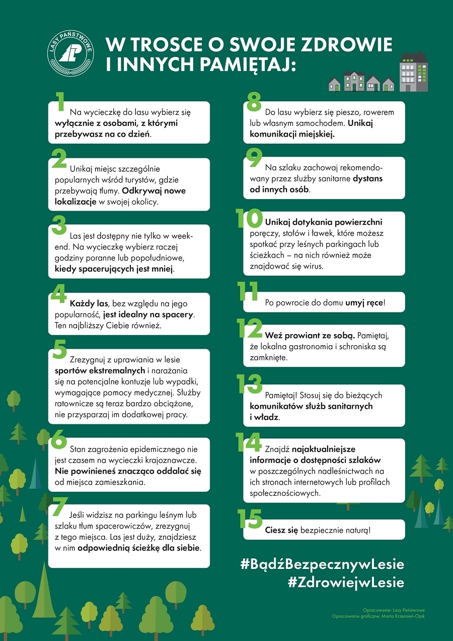 #ZdrowiejwLesie - Jak bezpiecznie wybrać się do lasu w czasie epidemii? - Zdjęcie główne