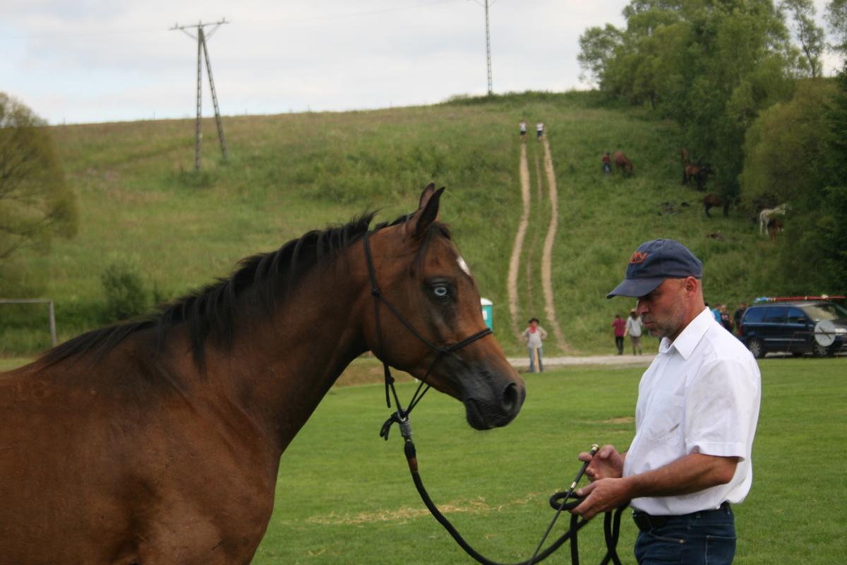 Miłośnicy koni zjechali w Bieszczady. Targi Końskie w Lutowiskach FOTO i VIDEO - Zdjęcie główne