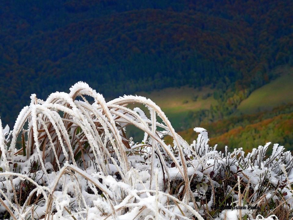 """BIESZCZADY: Jesienno-zimowy """"przeplataniec"""". Niepowtarzalne zdjęcia! [ZDJĘCIA+VIDEO] - Zdjęcie główne"""