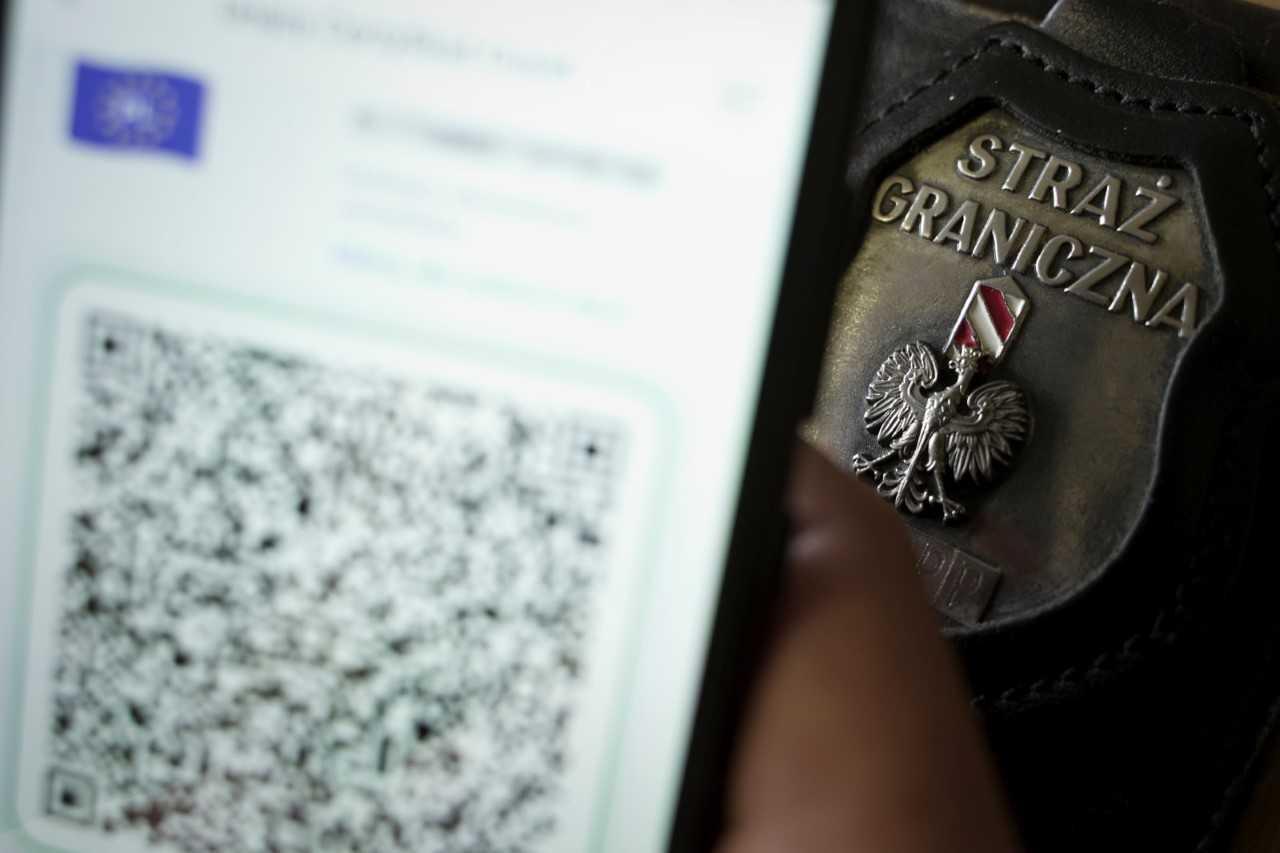 Fałszywe dokumenty pobytowe i unijne certyfikaty COVID na granicy państwa - Zdjęcie główne