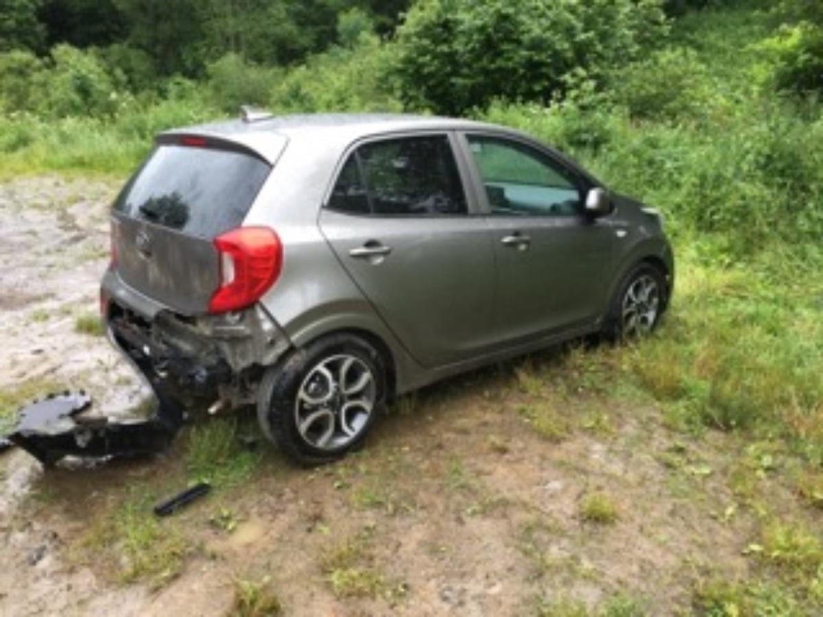 Bieszczady: Głodny niedźwiedź rozwalił samochód w poszukiwaniu jedzenia - Zdjęcie główne
