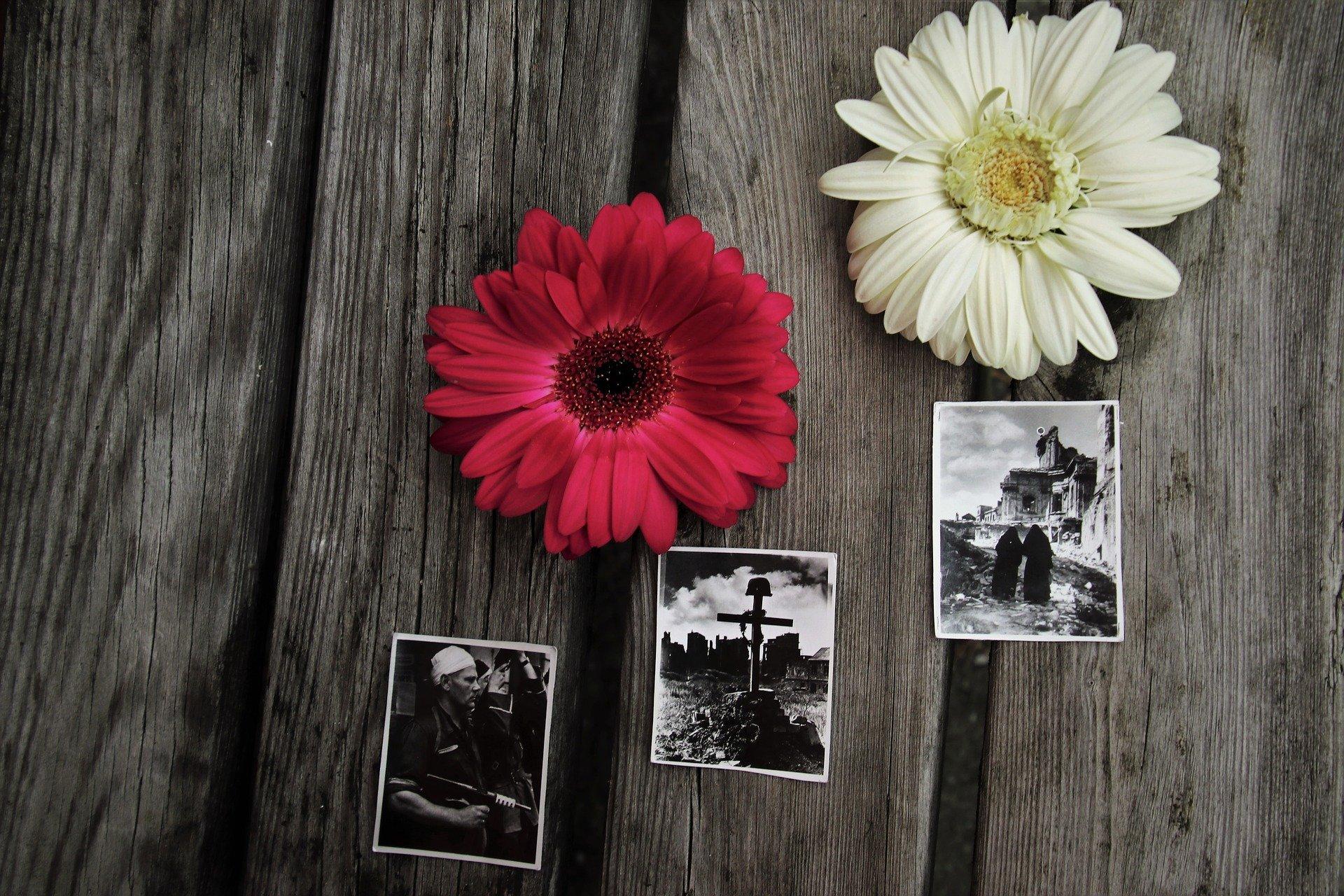 Żołnierze 3 Podkarpackiej Brygady OT i podhalańczycy złożą Hołd dla Powstańców Warszawskich w 77. rocznicę wybuchu walk - Zdjęcie główne