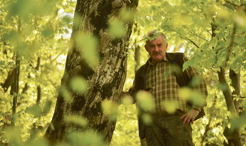 Kazimierz Nóżka - leśniczy, który filmuje misie - Zdjęcie główne