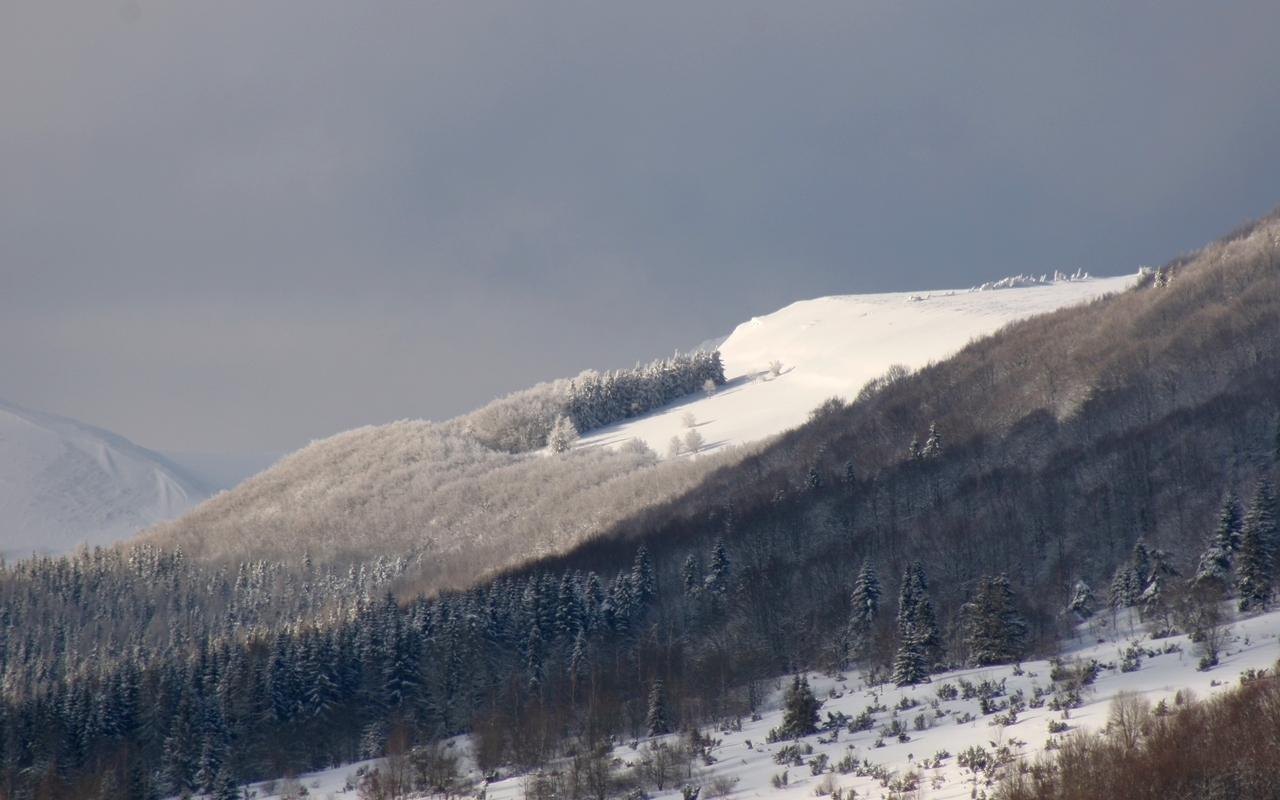 BIESZCZADY W OBIEKTYWIE: Nowa śnieżna odsłona Bieszczad [ZDJĘCIA] - Zdjęcie główne