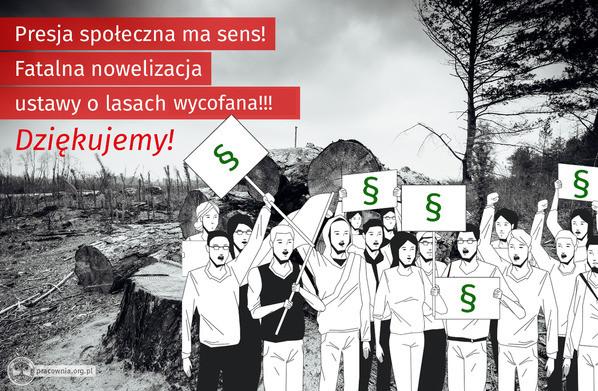 Sukces obrońców i obrończyń lasów. PiS wycofuje kontrowersyjny projekt ustawy - Zdjęcie główne