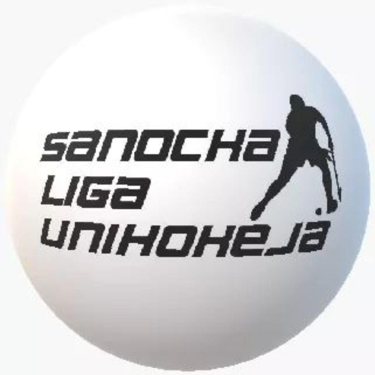 Jest decyzja w sprawie Sanockiej Ligi Unihokeja - Zdjęcie główne