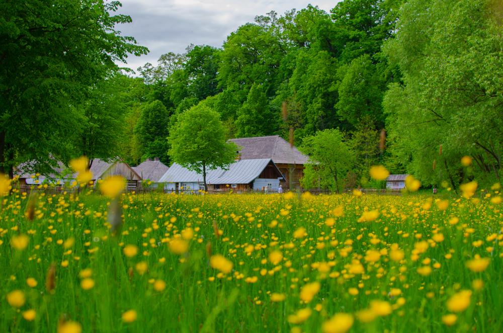 Wiosna w sanockim skansenie [FOTORELACJA] - Zdjęcie główne