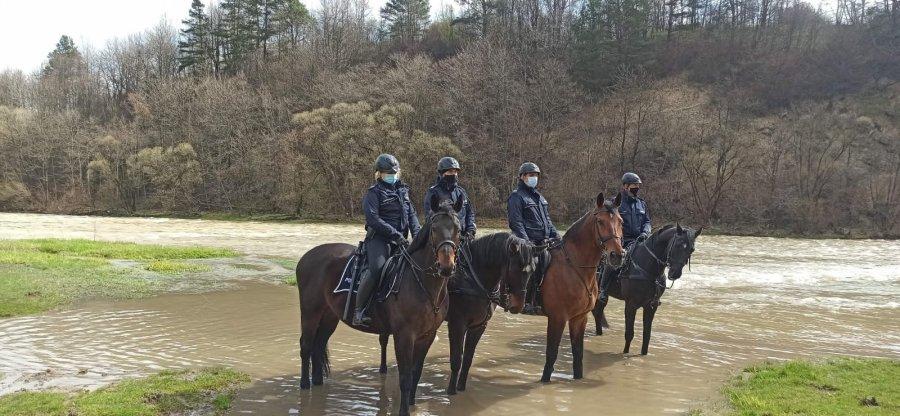 Tarliska 2021 - Działania prewencyjne Policji i Straży Rybackiej [ZDJĘCIA] - Zdjęcie główne
