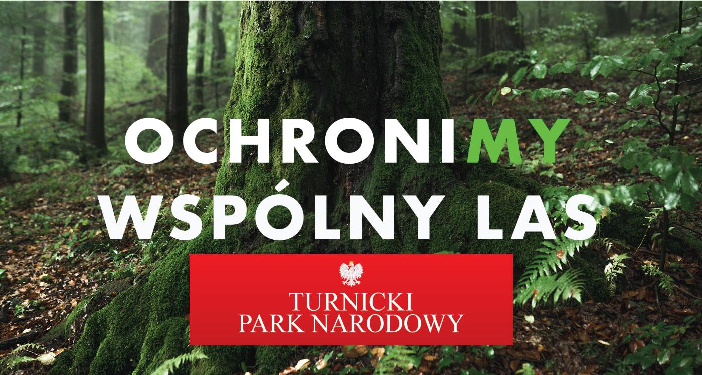 PRZEMYŚL: Blokada wycinki i okupacja terenu projektowanego Turnickiego Parku Narodowego! - Zdjęcie główne