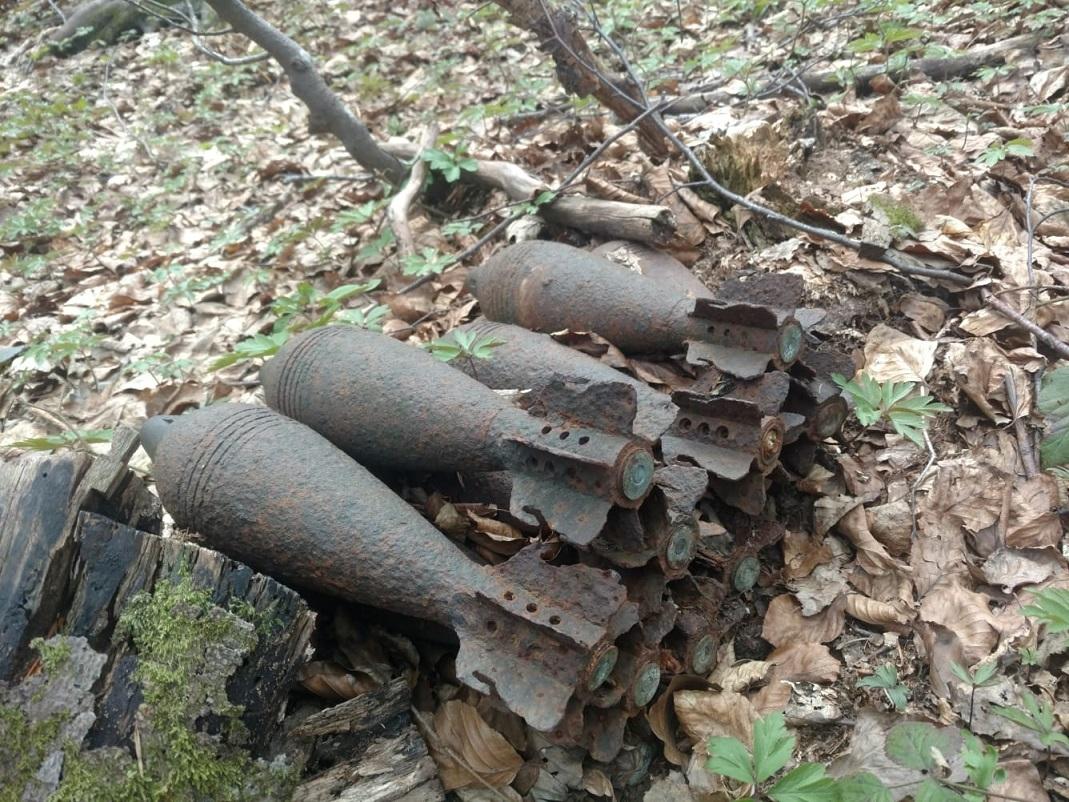 BIESZCZADY: Znaleziono 50 granatów moździerzowych oraz amunicję strzelecką [FOTO] - Zdjęcie główne
