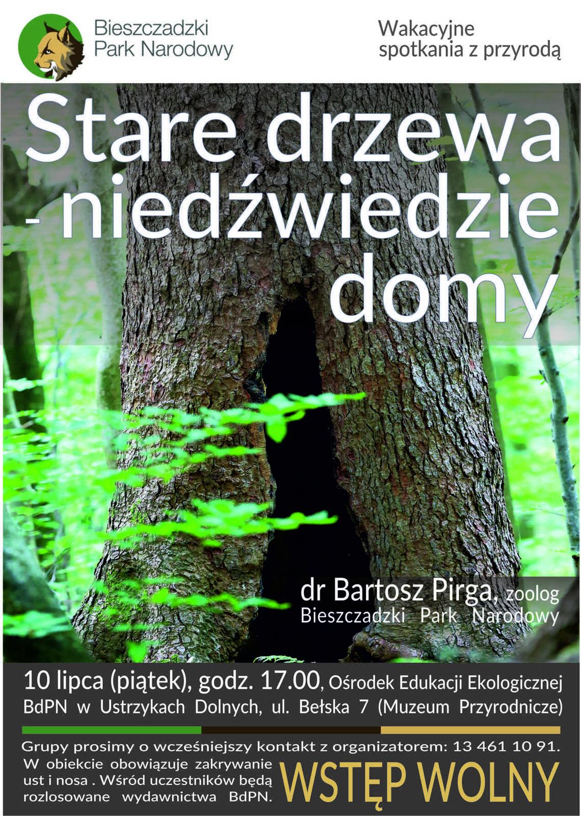"""""""Stare drzewa - niedźwiedzie domy"""". Zapraszamy do Ustrzyk Dolnych - Zdjęcie główne"""