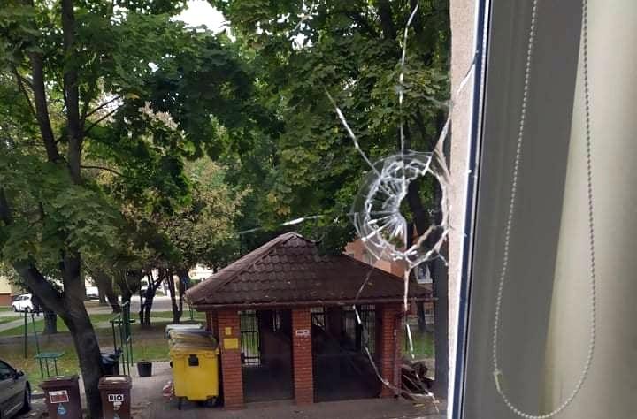 Atak na mielecką redakcję KORSO. Kamień mógł kogoś trafić w głowę! [ZDJĘCIA] - Zdjęcie główne