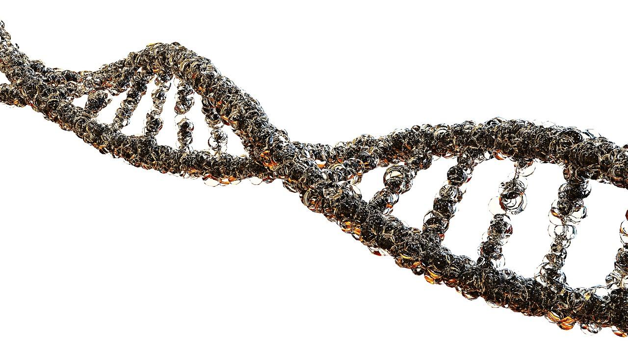 Niebezpieczne geny neandertalczyków przy COVID-19  - Zdjęcie główne