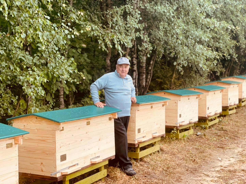 Do uli pełnych owadów wlał dziesiątki litrów oleju napędowego. Pomogli pszczelarze z Podkarpacia! - Zdjęcie główne