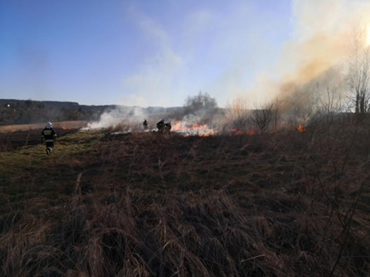 REGION: Jedna osoba ranna w wyniku pożaru traw [FOTO] - Zdjęcie główne