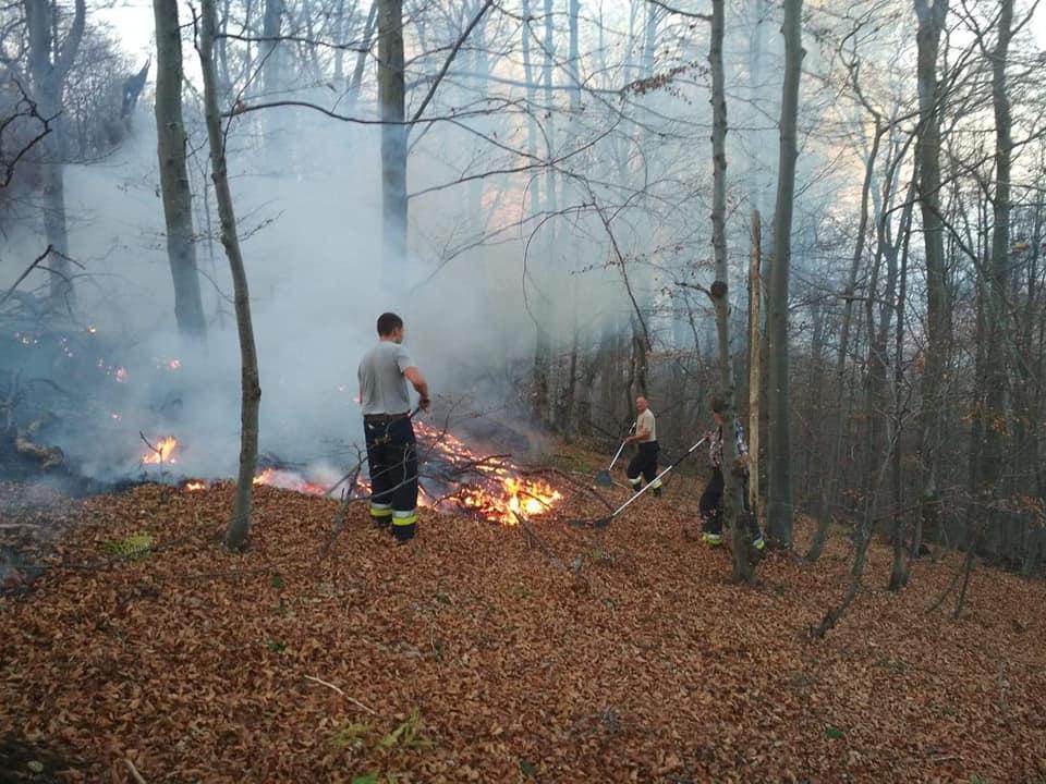 Płonie las w Bieszczadach [ZDJĘCIA+VIDEO] - Zdjęcie główne