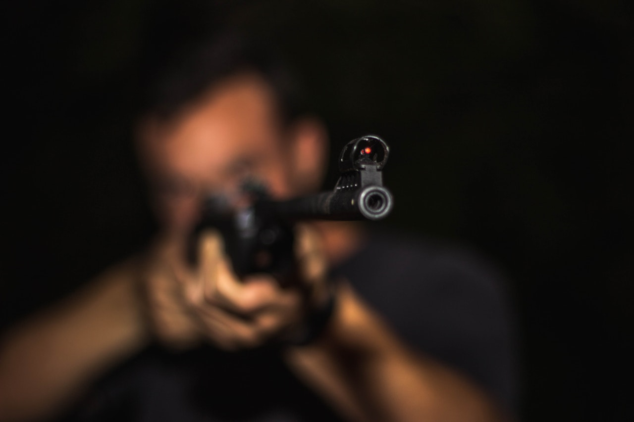 Z PODKARPACIA. Ktoś usiłował zastrzelić psa [FOTO] - Zdjęcie główne