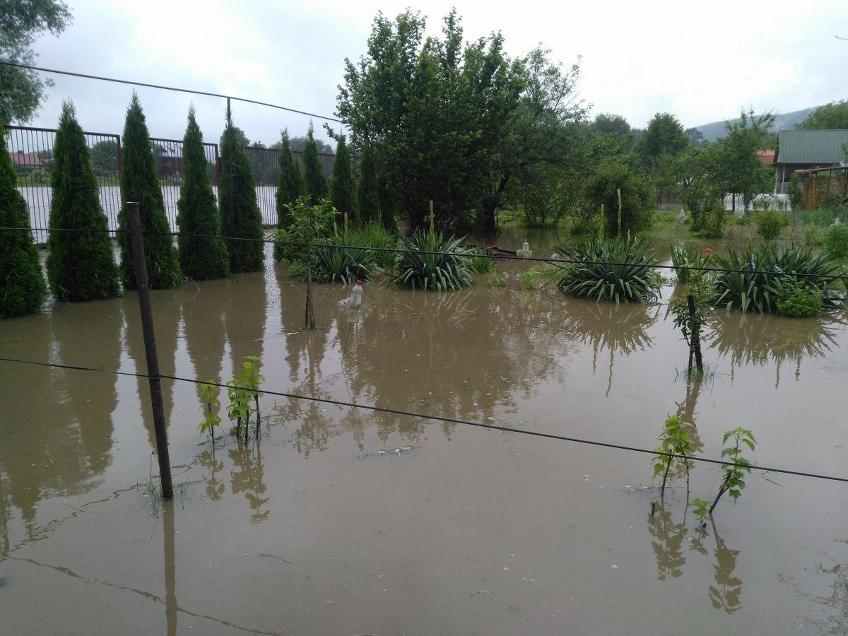 Sanok. Ogródki działkowe POD Sosenki pod wodą [FOTO+VIDEO] - Zdjęcie główne