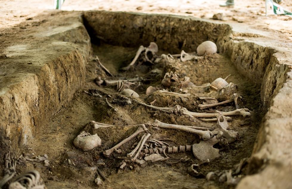 Podkarpacie. Niecodzienne znalezisko archeologów [FOTO] - Zdjęcie główne