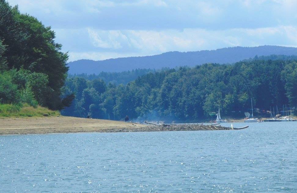 Przez Jezioro Solińskie po awanturnika - Zdjęcie główne
